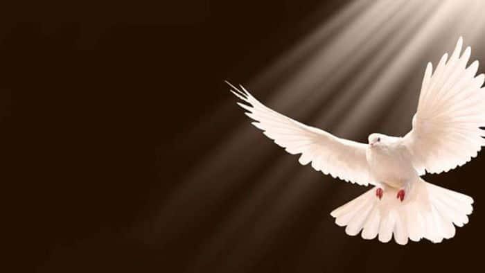 Cuales Son Las Manifestaciones Del Espíritu Santo
