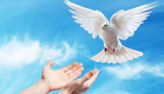Importancia del Espíritu Santo.